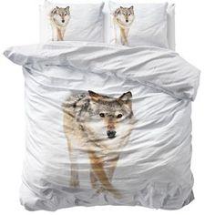 Snow Wolf White