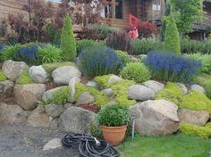 Ideas para tener un jardín con rocas