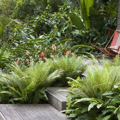 Tropical Garden Landscaping Design Ideas, Pictures, Remodel and Decor Tropical Garden Design, Tropical Landscaping, Tropical Plants, Front Yard Landscaping, Landscaping Ideas, Tropical Gardens, Backyard Ideas, Tropical Backyard, Large Backyard