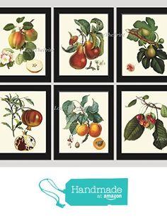 Fruit Print Set of 6 Antique Beautiful Botanical Blooming Apple Fowers Fig Pear Pomegranate Apricot Cherries Plants Garden Nature Home Room Decor Wall Art Unframed LF from LoveThePrint http://www.amazon.com/dp/B01DJZVPOC/ref=hnd_sw_r_pi_dp_hpbbxb0RNM4K9 #handmadeatamazon