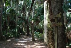 Trimble Park - about 30 mins from Lake Mary hotel