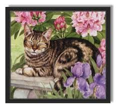 Pretty cat sleeping in garden, Romantic Drawing, Pop Art, Image Chat, Owl Pictures, Spring Painting, Cat Sleeping, Cat Drawing, Pretty Cats, Cats And Kittens
