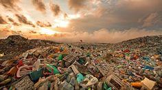 El plástico es uno de los múltiples problemas a los que nos enfrentamos los humanos como resultado de la industrialización y el progreso. Debemos hacer lo posible para detener el vertido incontrolado de plástico en la naturaleza pero, ¿qué hacemos con el plástico que ya está presente en ella? Quizás esta sea una de las soluciones viables.