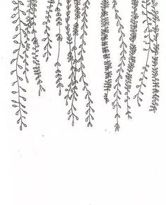 30 ways to draw plants and leaves - Ti .- 30 Möglichkeiten zum Zeichnen von Pflanzen und Blättern – Tiny Haus Familie Idee 30 ways to draw plants and leaves / - Leaf Drawing, Plant Drawing, Drawing Flowers, Vine Drawing, Floral Drawing, How To Draw Flowers, Simple Flower Drawing, Easy Flower Drawings, Very Easy Drawing