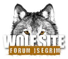 Komplizierter Prozess von der Habituierung über Futterkonditionierung bis zur notwendigen Entnahme eines verhaltensauffälligen Wolfes.