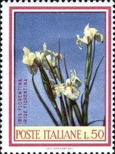 1967Dettaglio francobollo - catalogo completo dei francobolli italiani