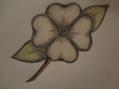Draw Flower Patterns how to draw a dogwood flower - Quickly learn how to draw a dogwood flower. Art Drawings For Kids, Love Drawings, Easy Drawings, Drawing Ideas, Sketch Ideas, Running Drawing, Dogwood Flowers, Draw Flowers, Drawing Tutorials For Beginners