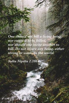 Sutta Nipata 2.396, Theravada Buddhism