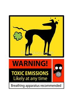 'Toxic emissions hazard sign' Metal Print by RichSkipworth Greyhound Art, Italian Greyhound, Cute Funny Animals, Funny Dogs, Lévriers Whippet, Funny Headlines, What Dogs, Lurcher, Grey Hound Dog