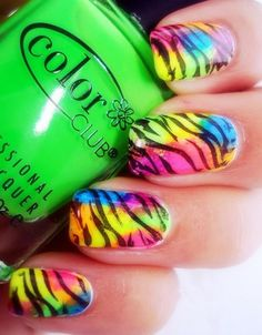 Zebra Print Nails Design,Candy zebra-stripe nails for girls  #zebra #nails #christmas www.loveitsomuch.com