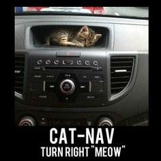 I upgraded to Cat-Nav!