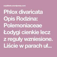 Phlox divaricata Opis Rodzina: Polemoniaceae Łodygi cienkie lecz z reguły wzniesione. Liście w parach ułożone na krzyż wobec siebie, kształtu najczęściej lancetowatego i osiągające do 5 cm długości…