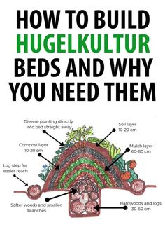 Build Hugelkultur Beds and Why You Need Them An in-depth talk about what hugelkultur beds are and why you need them in your permaculture efforts.An in-depth talk about what hugelkultur beds are and why you need them in your permaculture efforts. Raised Vegetable Gardens, Vegetable Garden Planning, Veg Garden, Edible Garden, Raised Garden Beds, Raised Beds, Vegetable Gardening, Veggie Gardens, Indoor Garden