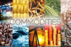 A commodity market is a market that trades in primary economic sector rather than manufactured products. Soft commodities are agricultural products such as wheat, coffee, cocoa and sugar. Hard commodities are mined, such as gold and oil. #CommodityTrading #TheTraderInstitute