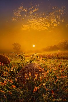 """Orange Crush"" Wisconsin Horizons By Phil Koch. Lives in Milwaukee, Wisconsin, USA. http://phil-koch.artistwebsites.com"