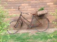 Old bike, dip tin with a creeper Planters, Planter Ideas, Old Bikes, Creepers, Garden Art, Dips, Industrial, Rustic, Buckets