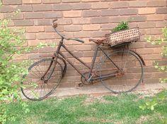 Old bike, dip tin with a creeper #bike #diptin #creeper #rustic #diy