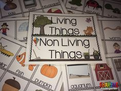 Sorting Living and Non Living things...