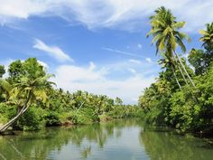 Backwaters, Kerala: Kerala is known as God's Own Country and is a paradise for honeymooners. The backwaters are a unique web of lakes, canals and rivers. Hire a houseboat and enjoy your honeymoon in traditional Kerala style.Image courtesy: © Thinkstockphotos/ Getty Images