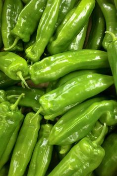 Sweet and mild chili peppers have very little to no heat. Some may have a mild spice level. They range from 0 to Scoville Heat Units. Here is a list of sweet and mild types of chili peppers. Types Of Chili Peppers, Yellow Chili Peppers, Vegetable Garden For Beginners, Gardening For Beginners, Gardening Tips, Vegetable Gardening, Long Green Peppers, Cubanelle Pepper, Green Pepper Recipes