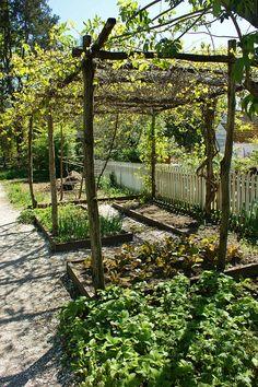 Wooden grape arbor with veggie beds underneath, Colonial Williasmburg, VA. Photo: KarlGercens.com, via Flickr