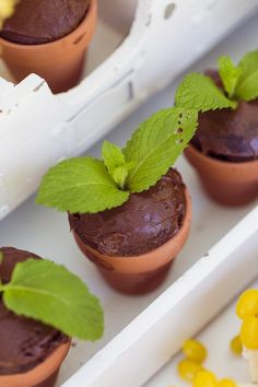 Chocolate Cupcakes Placed in Mini Terra Cotta Pots from a Peter Rabbit 1st Birthday Party via Kara's Party Ideas | KarasPartyIdeas.com (38)