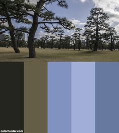 Imperial Palace Japan Gardens Color Scheme from colorhunter.com