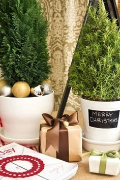 Potted Christmas Trees Make Every Room Festive | The Stir