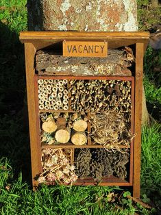 DIY project: Build a 'Bug Hotel' to attract beneficial insects - thisNZlife Bug Hotel, Ladybug House, Garden Projects, Diy Projects, Garden Insects, Sensory Garden, Beneficial Insects, Small Backyard Landscaping, Garden Design