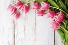 beautiful tulips on wooden background top view