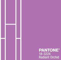 Pantone dévoile sa couleur de l'année 2014.   La couleur de Stimuli. Nous sommes in chez Stimuli, nous flairons les nouvelles tendances.