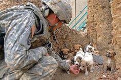 il popolo del blog,: qualche cosa di buono fanno i soldati americani,sp...