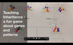 Fun activity for study of genetics and DNA in elementary and middle school. From the University of Utah. See how traits are inherited (or not) from generatio. Secondary School Science, Primary Science, Third Grade Science, Middle School Science, Elementary Science, Science Classroom, Science Resources, Science Lessons, Science Education