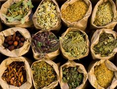 """Medicinal Herbs- """"the fruit of it shall be for eating and leaf of it for healing…"""" (Ezekiel 47:12)"""