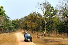Pench-Weekend Getaways in madhya Pradesh