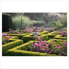 Image result for grace mayflower garden