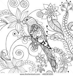 Parrot in fantasy flowers. Animals. Hand drawn doodle. Ethnic patterned illustration. African, indian, totem tatoo design. Sketch for avatar, tattoo, poster, print or t-shirt.