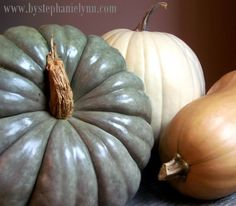 Polishing Pumpkins and Gourds for Indoor Use {preserving pumpkins}