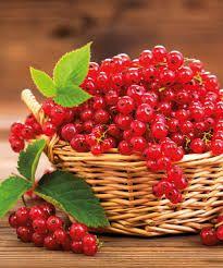 ribizli – Google Kereső Strawberry, Fruit, Google, Food, Essen, Strawberry Fruit, Meals, Strawberries, Yemek