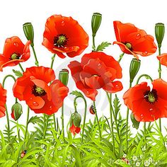 ZNU Removable Beautiful Poppies Flower Wall Decals Stickers Home Rooms Bedroom Living Room Kids Room Nursery Peel and Stick Wall Decor Wall Mural Wallpapers * Check out this great image : home diy wall Large Flowers, Red Flowers, Spring Flowers, Flower Window, Flower Wall, Flower Fabric, Art Floral, Wall Decor Stickers, Wall Decals