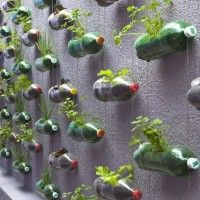 Upcycling Plastic Soda Bottles As An Urban Garden. Very cool idea for a blank wall.