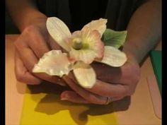 """Sugar gum paste flowers : """"Sugar flower creations """" (+playlist)"""
