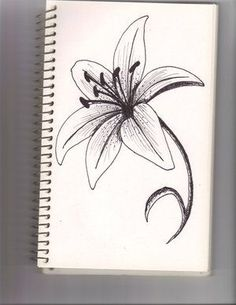 Cool and easy flowers to draw cool simple flower designs to draw how to draw a star lily yahoo image search results crafting for you mightylinksfo