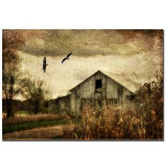 This Lois Bryan contemporary canvas art titled Wings of Change is a late-autumn, rural farmland setting in a landscape format. This is another great example of the artist capturing a moment that many might see in person but not appreciate.