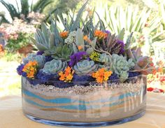 Succulent Arrangements | Succulent Arrangement (San Diego Only) | Urban Succulents