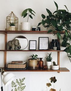 wood shelving + decor