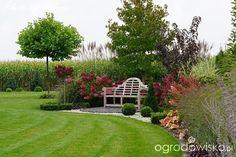 Jak zamienić glinę w wymarzony skrawek Ziemi. - strona 777 - Forum ogrodnicze - Ogrodowisko