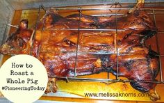 How to roast a whole pig. Dry rub and injections recipes. Check out the pic of the shoulder at the end, yummy!