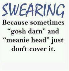 Sometimes you just gotta swear  ): /