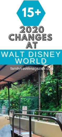 2020 has brought its share of changes to the entire travel industry, including Walt Disney World. If you are considering a trip to Walt Disney World in the near future, be sure to read all of these 2020 charges at Walt Disney World. Disney World Rides, Disney World Theme Parks, Walt Disney World Vacations, Disney Parks, Disney World Tips And Tricks, Disney Tips, Disney Park Passes, Disney Resort Hotels, Disney Cruise Line